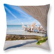 Driftwood C141347 Throw Pillow
