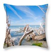 Driftwood C141354 Throw Pillow