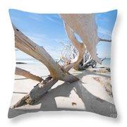 Driftwood C141414 Throw Pillow