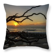 Driftwood Dawn Throw Pillow