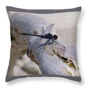 Driftwood Dragofly Throw Pillow