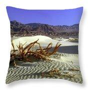 Driftwood Dune Throw Pillow