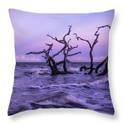 Driftwood In The Waves Throw Pillow