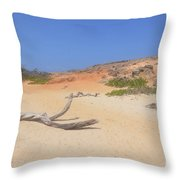 Driftwood On Boca Keto's Secluded Beach Throw Pillow