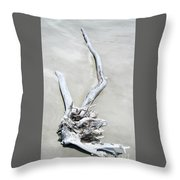 Driftwood On The Beach Throw Pillow