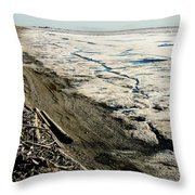 Driftwood On The Frozen Arctic Coast Throw Pillow