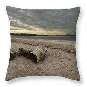 Driftwood On West Sands Throw Pillow