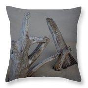 Driftwood Reaches Throw Pillow