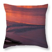 Driftwood Sundown Throw Pillow