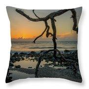 Driftwood Sunrise Throw Pillow