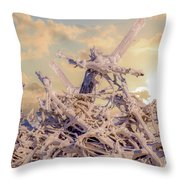 Driftwood Sunset Throw Pillow