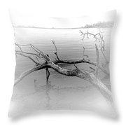Driftwood Vignette - Grayscale Throw Pillow