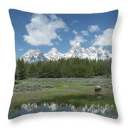 Drinking Buffalo Throw Pillow