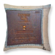 Drinking Water Throw Pillow