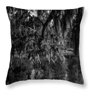 Drippin With Spanish Moss At Middleton Place Throw Pillow