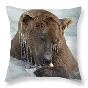 Dripping Grizzly Bear Throw Pillow