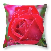Dripping In Beauty - Double Knock Out Rose Throw Pillow