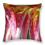 Dripping Stargazer Throw Pillow