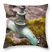Dripping Tap On A Stone Trough Throw Pillow