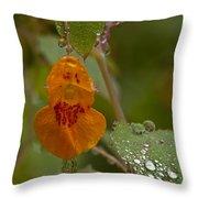 Dripping Wet #1 Throw Pillow
