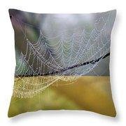 Dripping With Diamonds Throw Pillow