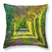 Drive Into Autumn Throw Pillow