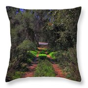Driveway To Home Throw Pillow