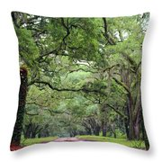 Driveway To The Past Throw Pillow