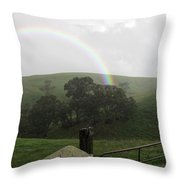 Drizzling Rainbow Throw Pillow