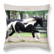 Drogheda Gold Throw Pillow