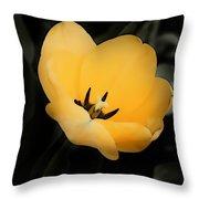Drop Of Sunshine Throw Pillow