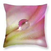 Droplet In Pink Throw Pillow