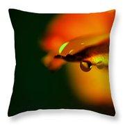 Droplet Off A Rose Petal Throw Pillow
