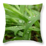 Droplets 02 Throw Pillow