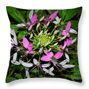 Droplets C Throw Pillow