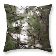 Droplets On Branches Throw Pillow