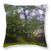 Droplets On Pine Branch Throw Pillow