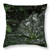 Drops And Leaf Throw Pillow