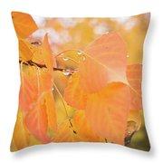 Drops Of Autumn Throw Pillow