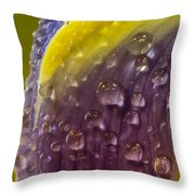 Drops Of Bliss Throw Pillow
