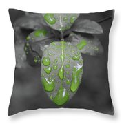 Drops Of Color 1 Throw Pillow