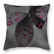 Drops Of Color 2 Throw Pillow