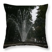 Drops Of Fountain Throw Pillow