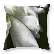 Drops Of Sweetness Throw Pillow