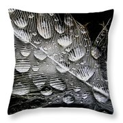 Drops On A Feather Throw Pillow