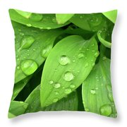 Drops On Leaves Throw Pillow