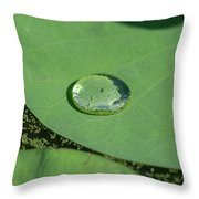 Drops On Lotus Leaf Throw Pillow