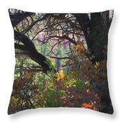 Drought Fall Throw Pillow