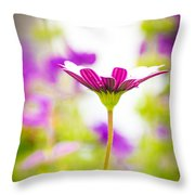 Drowning In The Sun Rays Throw Pillow
