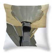 Drumstick Throw Pillow